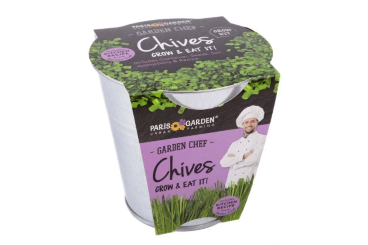 Chives plant from Paris Garden